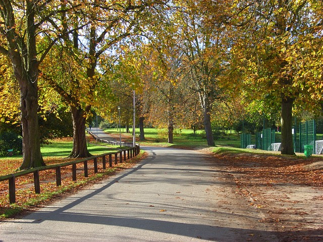 PARKStastic Family Time: 3 Kid-Friendly Parks in Reading, United Kingdom