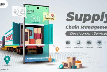 supply chain development services