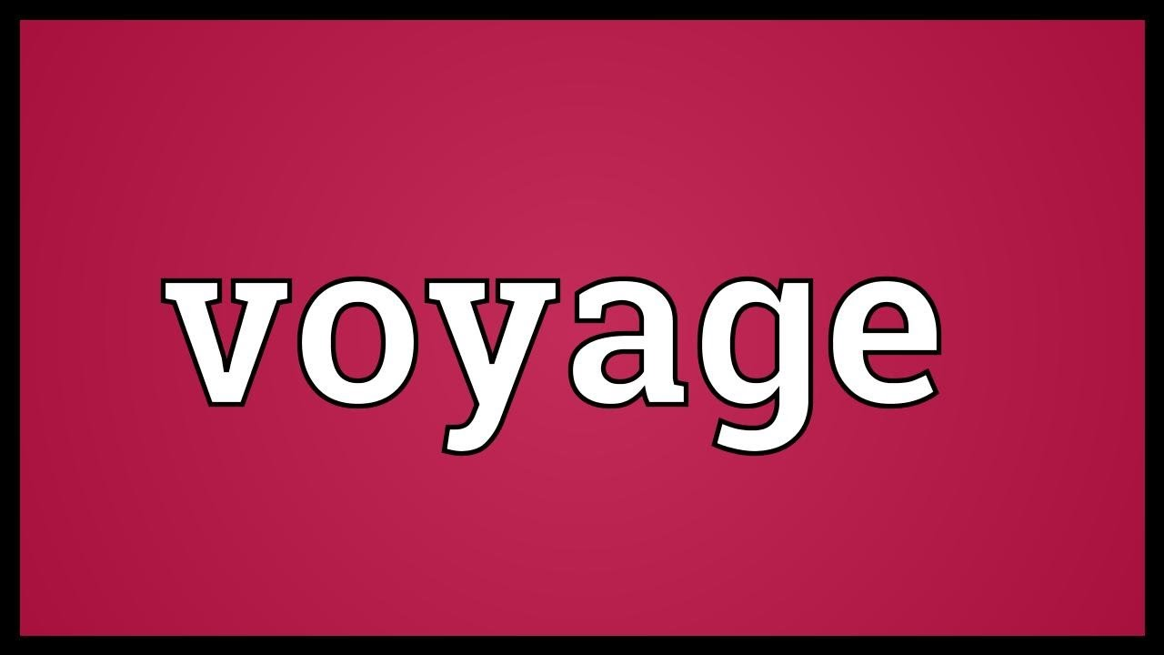 Voyage charter party,