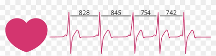 A Comprehensive Guide to Heart Rate Variability