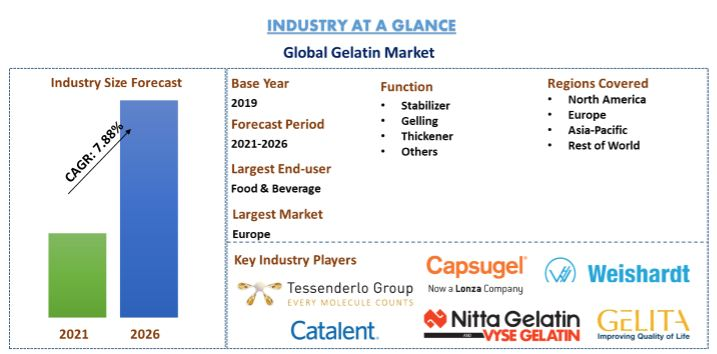 Global Gelatin Market Is Expected To Foresee Significant Growth During The Forecast. Europe To Witness the Highest Growth