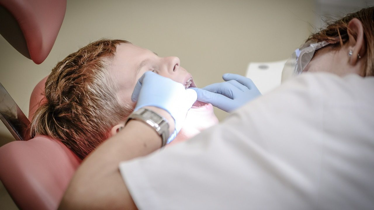 Are You Curious To Know The Services Offered By Tampa Bay Dentist?